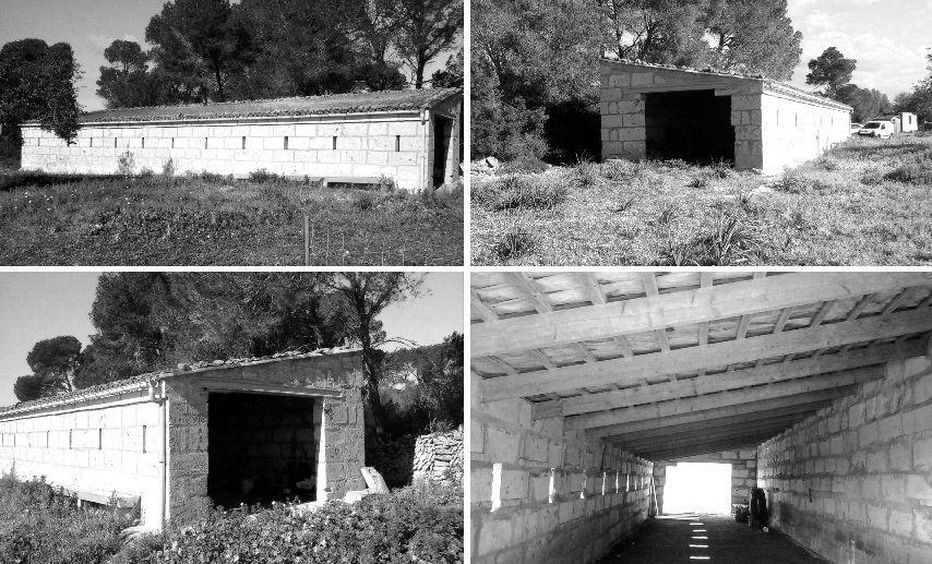 idoia otegui i arquitectura reforma rehabilitacion nave palma de mallorca 1